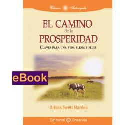 El camino de la prosperidad - eBook