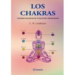 Los chakras, centros magnéticos del ser humano